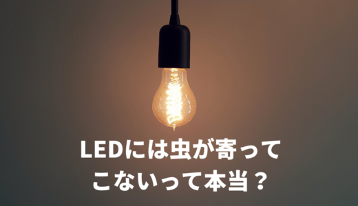 LEDなら虫は集まらないって本当?我が家のシーリングライト事情