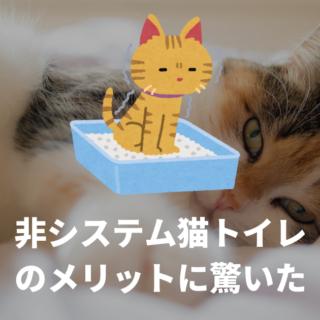 システムトイレ一筋だった僕が従来の猫トイレを使ってみて驚いたメリット